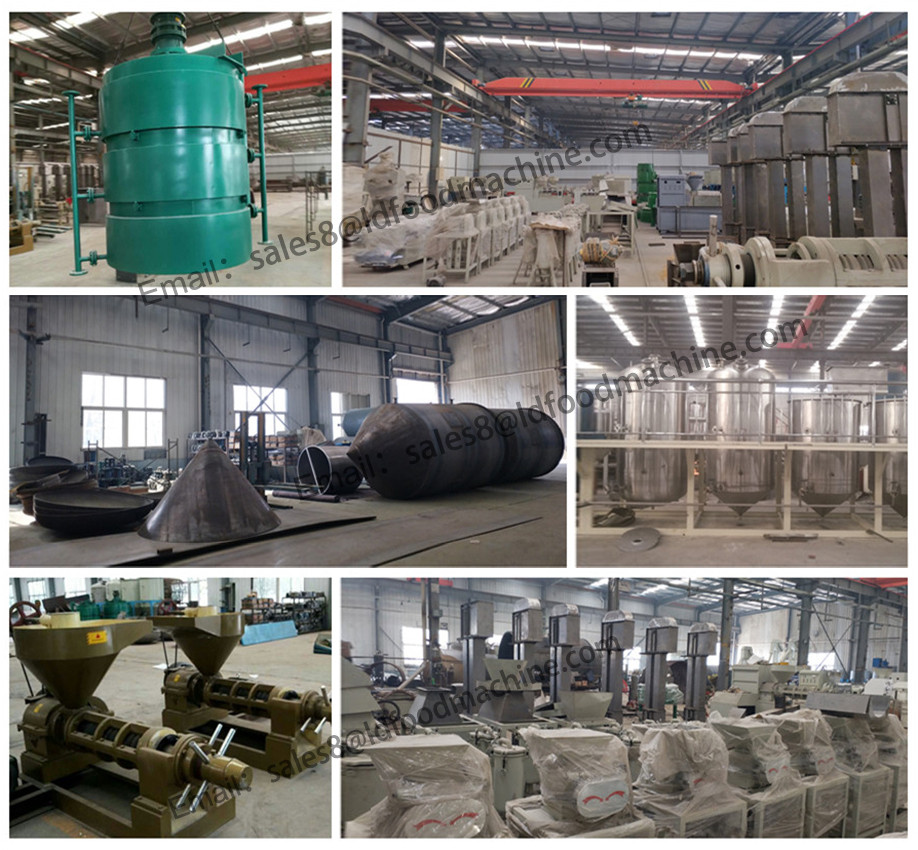 DISCOUNT! high profits screw press palm kernel oil machinery