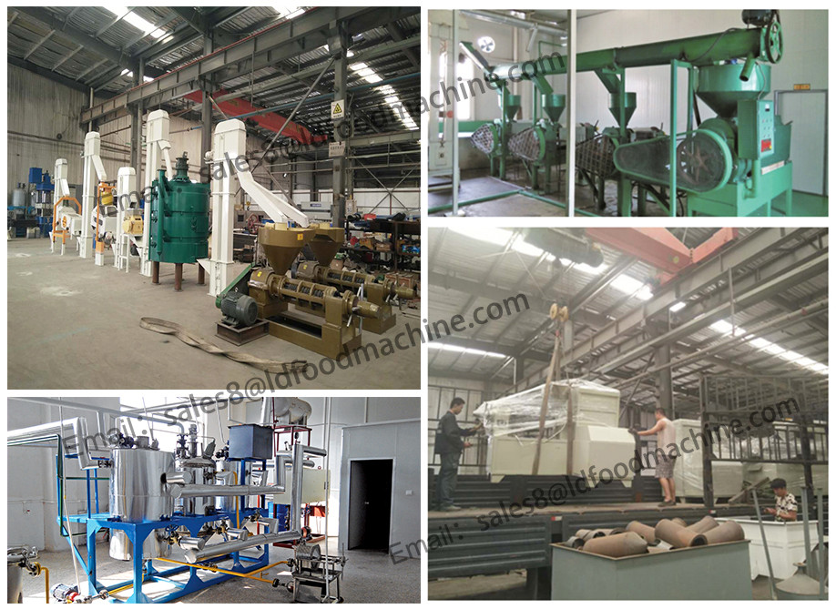LD food level material corn flour machine