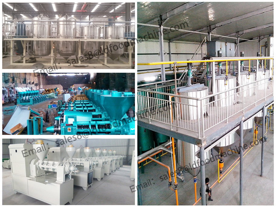 China advanced complete palm oil processing machine supplier