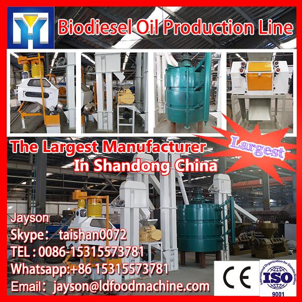 small scale 20Ton sunflower oil refining plant #1 image
