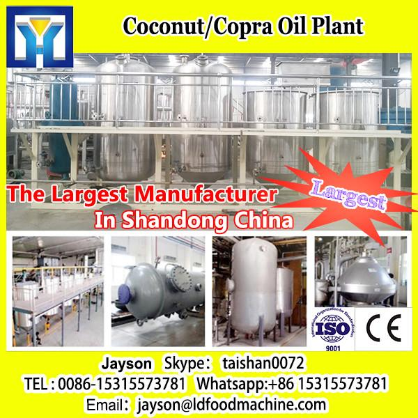 Stainless steel Oil press machine of sunflower #1 image