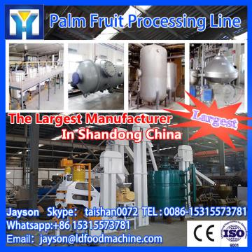 high quality palm oil processing plant with LD price