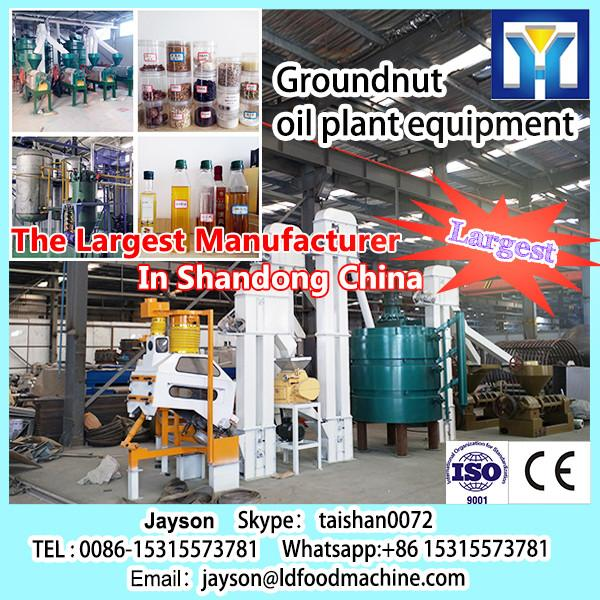 Flexseed oil pretreatment machine provide by 35years experience manufacturer with CE.BV #1 image