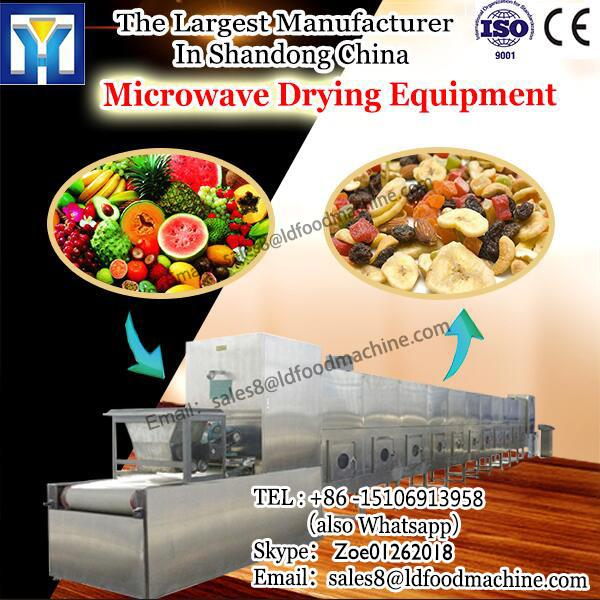 egg Microwave Drying Equipment tray industrial tunnel belt type drying machine #1 image