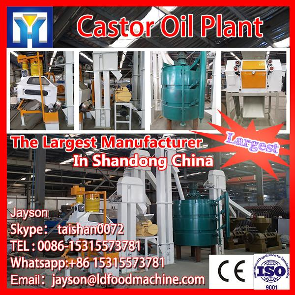 Professional high quality roasted peanut seasoning machine with CE certificate #1 image