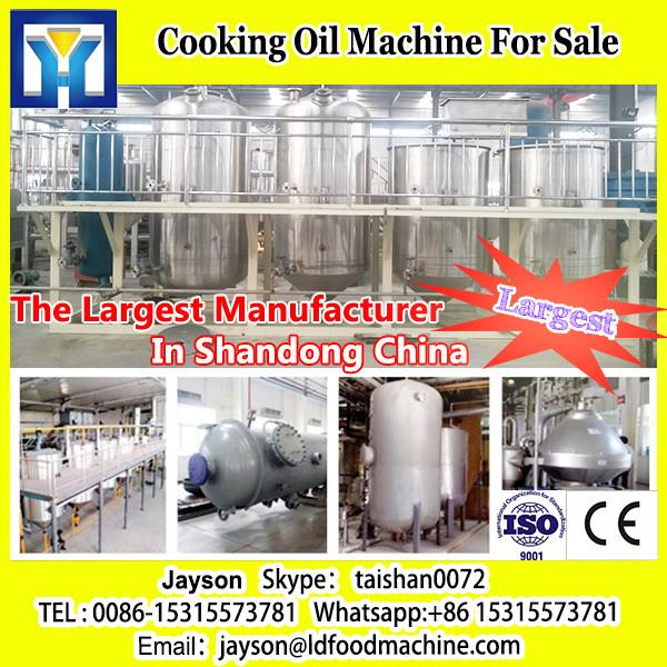 LD Hot Sell High Quality Flax Seed Cold Oil Press Machine #1 image